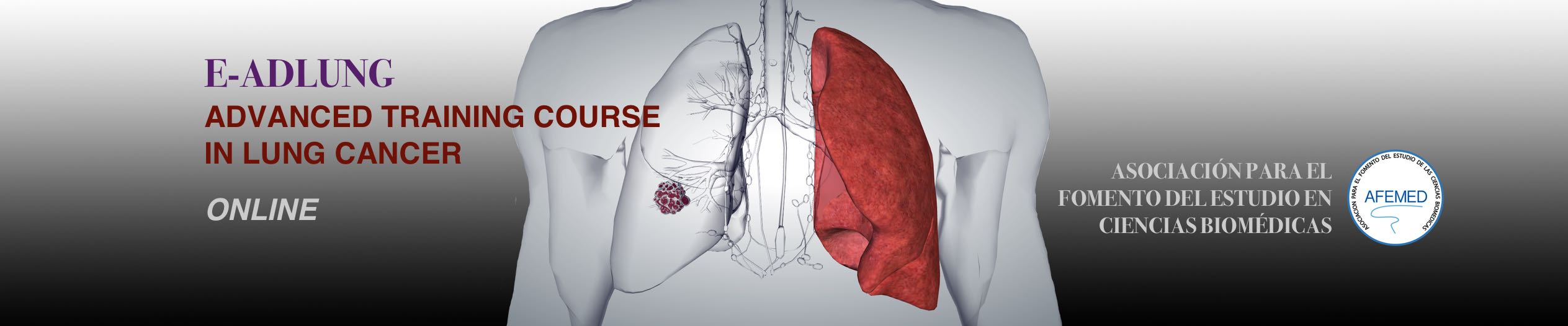 2nd advanced training course in lung cancer